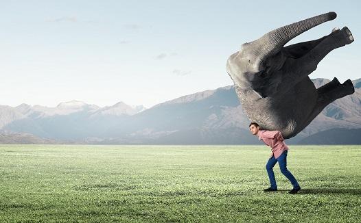 Burnout : STOP ! J'apprends l'affirmation de soi (au travail)!